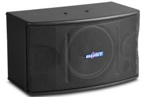 Quality 10 inch  full range karaoke speaker OK-220 for sale
