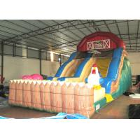 Quality Inflatable slides  XS206 for sale