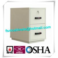 Quality Waterproof Fire Resistant File Cabinets , Fire Safe File Cabinet With 2 Drawer for sale