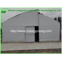 Quality used fixed roof greenhouses for sale