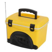 China Yellow FM Radio Cooler bag  PP plastic 5L Volume Cooler Box Outdoor on sale