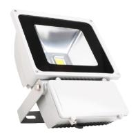 Quality 50 watt Floodlight series white body warm white CE& ROHS approved for sale