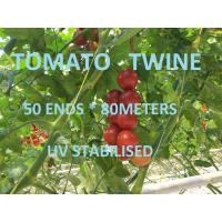 Buy cheap Greenhouse Tomato Tying Twine Colorful Plastic Garden Packing Raffia String from wholesalers