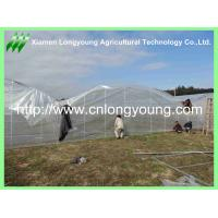 Quality cheap tunnel-connected greenhouse for sale