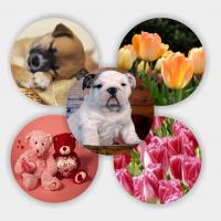 Quality 3d coaster Lenticular PET material 3d coaster for sale