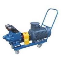 """Ex Proof 3"""" 12V Mobile Fuel Transfer Pump With High Suction Vacuum"""