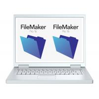 Quality Genuine Software filemaker pro latest version For Windows 1 Year Warranty for sale