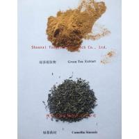 Quality Plant extract Tea polyphenol 98% for sale