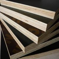 Quality China ACEALL WBP Poplar Core Shuttering Film Faced Plywood Building Materials for sale