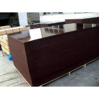 Quality Brown Film Faced Shutter Plywood (FFP059) for sale