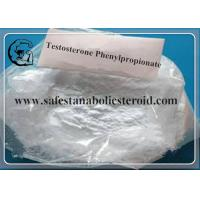 Quality 1255-49-8 99% Purity Testosterone Phenylpropionate Muscle Growth Steroid Hormone for sale