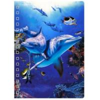 Quality 45 Sheets 3D PET Cover Lenticular Spiral A5 Notebook With UV Printing for sale