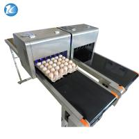 China Easy Operation Egg Batch Number Printer , Expiry Date Printing Machine For Eggs on sale