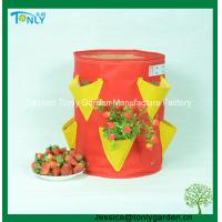 Quality Strawberry Planting Bag Supplier for sale