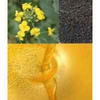 China Refined Rapeseed Oil Refined Cooking Oil on sale