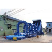 Quality Large Wild Rapids Inflatable Water Slide Pool for sale