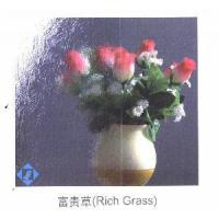 Quality Rich Grass Patterned Glass for sale