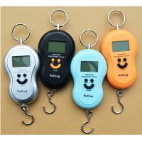 Quality Over Load Indication Hanging Digital Weighing Scale With ABS Plastic Material for sale