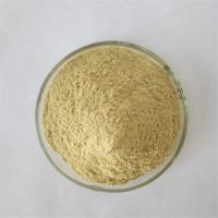 China GMP Factory Detoxification Mung Bean Sprout Extract on sale