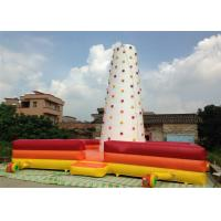 Quality Children Inflatable Climbing Mountain 9 X 9 X 8m white inflatable rock climbing wall with fence around for sale