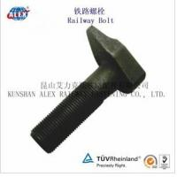 Quality Odd Shaped Rail Bolt with Plain Oiled Made in China for sale