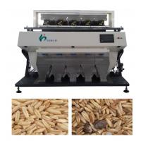 China LED Optical Color Sorter Machine For Grain With Italy Imported MATRIX Ejector on sale