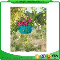 Quality Colorful ABS Plastic Hanging Pots Includes Hanging Chain With Hook for sale