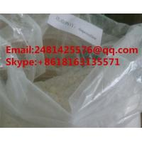 Quality 99% Purity Sex Steroid Hormone Dapoxetine Powder CAS 119356-77-3 For Muscle Building for sale