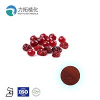 China Pure Anthocyanidins Cranberry Extract / Fruit Extract 5% - 25% Resisting Cancer on sale