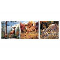 Quality Custom 16x16 Inches 3d Lenticular Photo Flowers & Animals Mounted Wall Art Print for sale