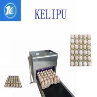 Quality Easy Operation Egg Laser Batch Coding Machine With Thermal Foam Type Nozzle for sale