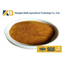 Quality CGM Granules Corn Gluten Feed For Rich Amino Acid Vitamin And Mineral Matters for sale