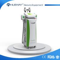 China cryo lipolysis beauty machine / fat cell slimming treatment on sale