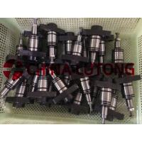 Quality Diesel Plunger Pw2-China Ep9 Diesel Pump Plunger supplier for sale