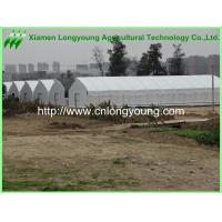 Buy saw tooth greenhouse at wholesale prices