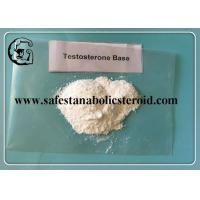 Quality Muscle Building Anabolic Steroids Testosterone Base White Powder for Gaining Muscle CAS 58-22-0 for sale
