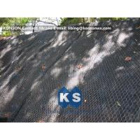 Quality Hexagonal Wire Netting Gabion Basket Retaining Wall Coated Polyethylene PE Gabion Boxes for sale