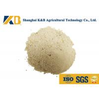 Quality Dried White Rice Protein Powder Nutrition / Natural Feed Additives Long Expiry Date for sale