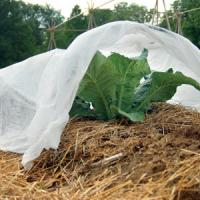Buy cheap Durable Recycled Non Woven Fabric , Breathable Non Woven Fabric For Landscape from wholesalers