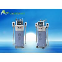 Quality Cryolipolysis slimming machine/Cryolipolysis machine for home use/Cryolipolysis fat freeze slimming machine for sale