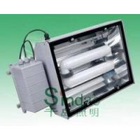 Quality Induction Lamp-Tunnel Light (SD-TL-404) for sale