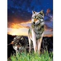 Quality 0.6mm PET+157g Coated Paper 3D Lenticular Pictures / 3D Lenticular Wall Art for sale