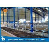 Livestock Farm Locking Feed Barriers / Steel Galvanized Cattle Headlock Plan