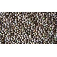 Quality hemp seeds product for sale