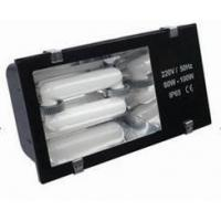 Quality Induction Lamp, Tunnel Light (SD-TL-405) for sale