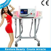 PZ LASER CE dual wavelength portable lipo laser machine for sale
