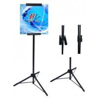 Quality Display Stand (BS-P081) for sale