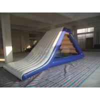 Buy Inflatable Freefall Water Slide at wholesale prices