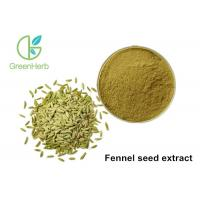 Quality High Pure Natural Plant Extract Powder Fennel Seed Extract Powder for sale