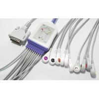 Quality Snap 12 Leads EKG Cable , Schiller 10 Leads GE ECG Cable For AT1 2 3 5 AT60 AT104 CS100 for sale